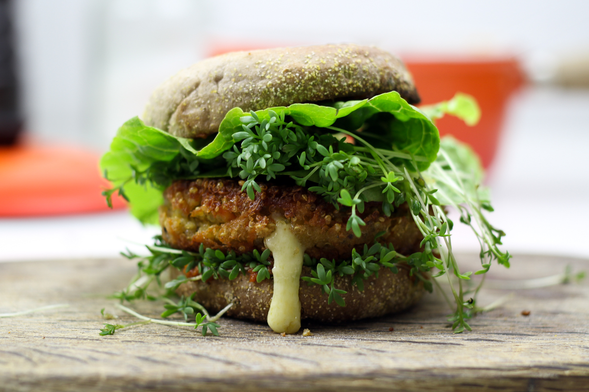 kitchenmate-quinoa-burger-7