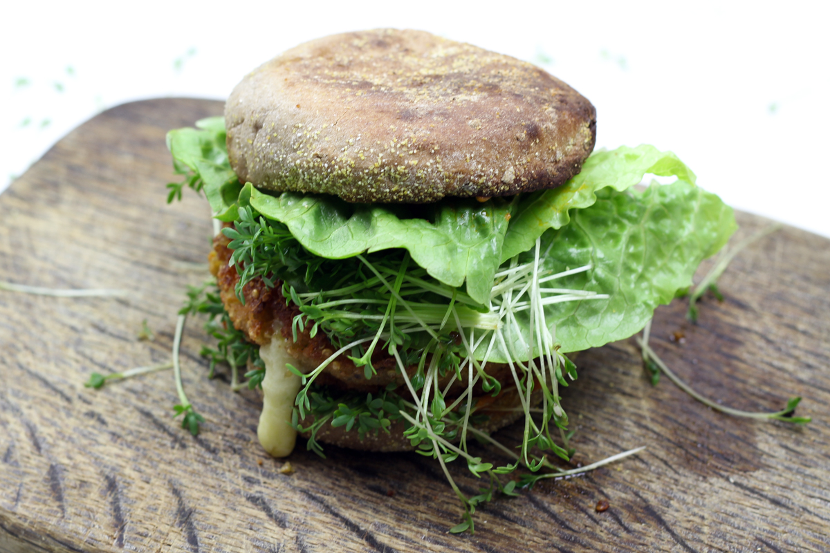 kitchenmate-quinoa-burger-9
