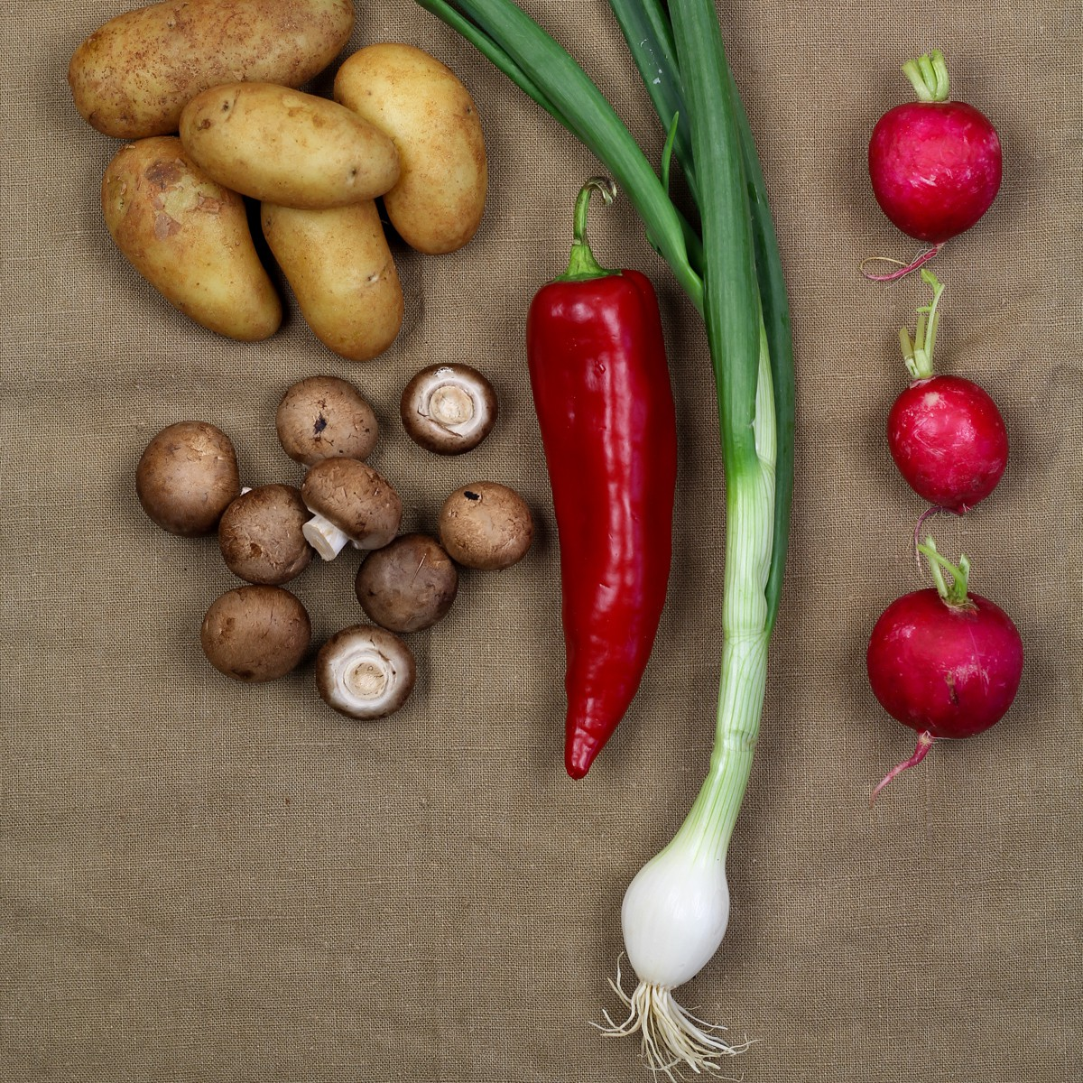 kitchenmate-veggieschnitzel1