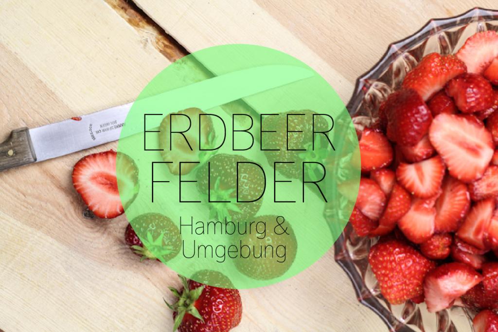 erdbeeren selber pfl cken selbstpfl ckfelder in und um hamburg. Black Bedroom Furniture Sets. Home Design Ideas