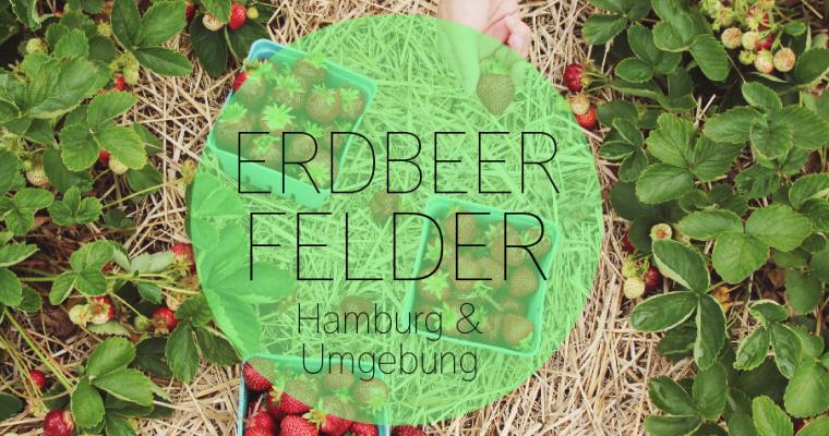 Erdbeeren selber pflücken in Hamburg: Die besten Selbstpflückfelder der Stadt