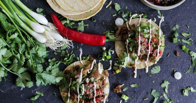 Weder Fisch, noch Fleisch, noch Soja: Pulled Midori Tacos